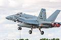 Spanish Hornet!!! (10083260703).jpg
