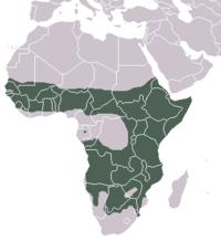 Distribución de la hiena manchada