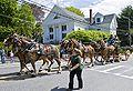 Springfest Parade 2008.jpg
