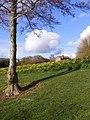 Springtime near the Cabin - geograph.org.uk - 1225816.jpg