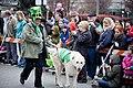 St. Patrick's Festival 2015 (16618367547).jpg