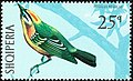 Stamp of Albania - 1971 - Colnect 301815 - Common Firecrest Regulus ignicapilla.jpeg