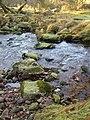 Stepping stones over Baggator Brook - geograph.org.uk - 299708.jpg