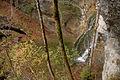 Stiegengraben 4348.JPG