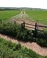 Stile and footpath near Blackawton - geograph.org.uk - 1323503.jpg