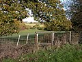 Stile at SO677633 - geograph.org.uk - 278557.jpg