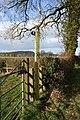Stile in Cholmondeley Estate - geograph.org.uk - 712579.jpg