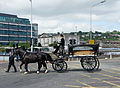 Streets Of Cork in Funeral.jpg