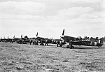 Supermarine Spitfire Mk VBs of No. 131 Squadron RAF being prepared for a sweep at Merston, a satellite airfield of Tangmere, Sussex, June 1942. CH5879.jpg