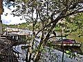 Surui - panoramio (10).jpg
