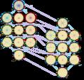 Symmetries of icositetragon.png