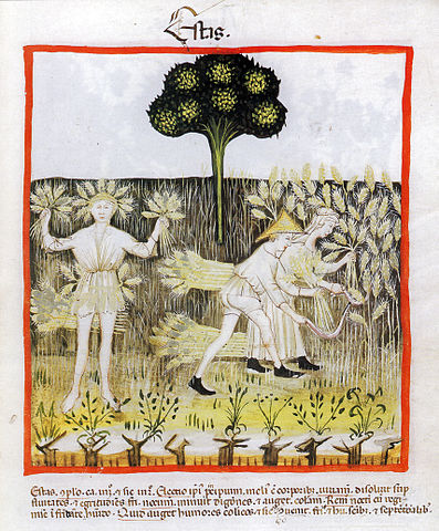By unknown master (book scan) [Public domain], via Wikimedia Commons