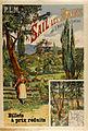 Tanconvilles Poster Sail les Bains.jpg