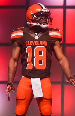 Taylor Gabriel - Gabriel with the Cleveland Browns in 2015