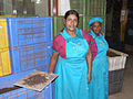Tea Factory of Kandy.jpg