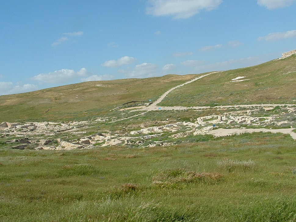 Tel Arad - General View