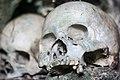 Tengkorak manusia di pemakaman Tanah Toraja Sulawesi.jpg