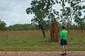 Termite Mound (8308711545).jpg