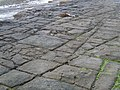 Tessellated pavement pattern.jpg