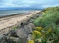 The Ayrshire Coastal Path At Prestwick - geograph.org.uk - 1432235.jpg