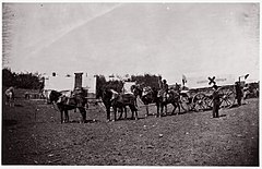 The Crack Team of the 1st Division, 6th Corps near Hazel River, Virginia MET DP70887.jpg