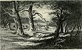 The New Forest and the Isle of Wight. With eight plates and many other illustrations (1903) (14591197858).jpg