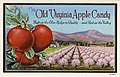 The Old Virginia Apple Candy, apple orchard (NBY 5203).jpg