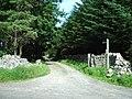 The Road to Reagill Grange - geograph.org.uk - 202481.jpg