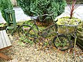 The bicycle as planter - geograph.org.uk - 1035503.jpg