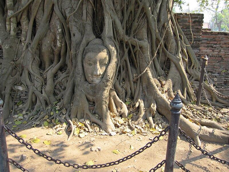 Ayutthaya A Magnificent Day Tour From Bangkok