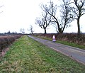 Thorpe Satchville Lane - geograph.org.uk - 1122340.jpg