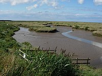 Tidal creek - geograph.org.uk - 952646.jpg