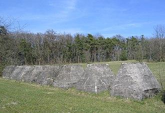 Toblerone line - Concrete blocks close to the Leman Lake in Gland.