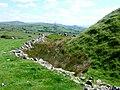 Tomen-y-mur - geograph.org.uk - 1351596.jpg