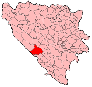 Collocatio municipii in Bosnia et Herzegovina