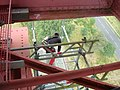 Travaux de rénovation du viaduc de Garabit (échafaudage).jpg
