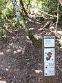 Trencall del Camí dels Francesos a les Pinasses (abril 2011) - panoramio.jpg