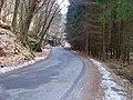Truskavenský důl, silnice směr Kokořín.jpg