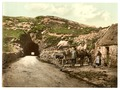 Tunnel near Glengariff. County Cork, Ireland-LCCN2002717375.tif
