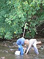 Two boys collecting aquatic macroinvertebrates on the North Toe River (5029714610).jpg