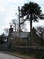 Ty'n Llan, Llanarmon - geograph.org.uk - 1778932.jpg