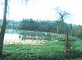 Tymákov, rybník.jpg