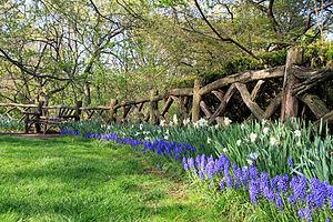 Shakespeare garden - Shakespeare Garden in Central Park