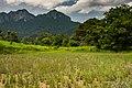 USAID Measuring Impact Conservation Enterprise Retrospective (Philippines; Nagkakaisang Tribu ng Palawan) (26420934128).jpg
