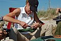 USFWS Northeast Regional Director Wendi Weber bands a rufa red knot shore bird, Fortescue Beach (NJ) (17503533148).jpg