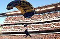 US Navy 041204-N-2568S-085 A member of the U.S. Navy Parachute Demonstration Team, The Leapfrogs, descends onto the 50 yard line during pre-game ceremonies at the 105th Army vs. Navy game.jpg