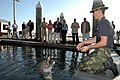 US Navy 060302-N-0946B-001 Hull Technician Fireman Stefan Gingerich assigned to Naval Special Clearance Team One works with a dolphin, named Ten, during a demonstration on board Naval Base Point Loma.jpg