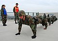 US Navy 090227-N-4044H-002 Security personnel assigned to Naval Support Activity Naples participate in team pushups during a team-building obstacle course at Naval Support Activity Naples.jpg