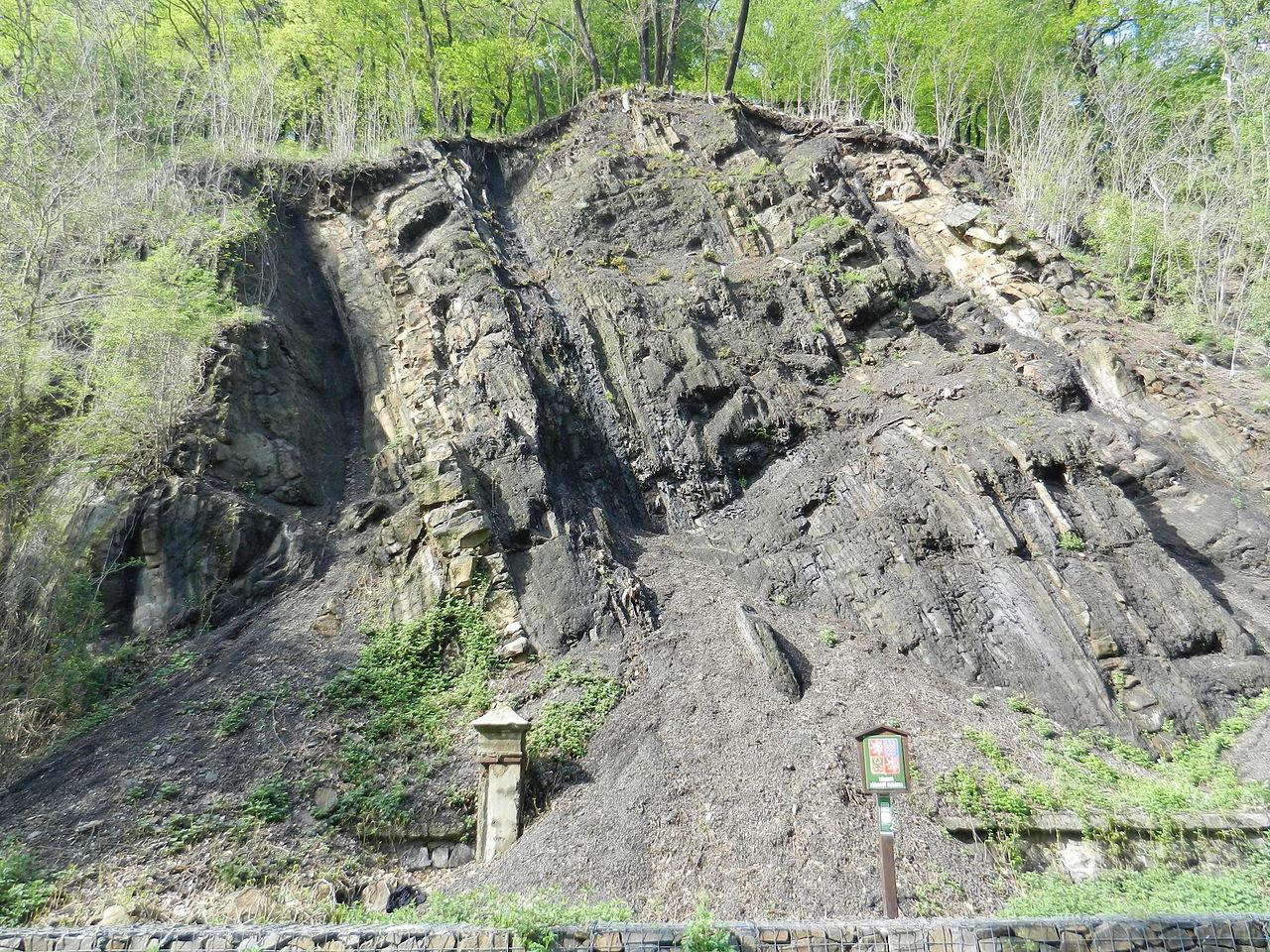 Uhelná sloj na území národní přírodní památky