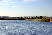 Radipole Lake is a nature reserve close to the town centre.
